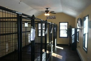 Photo #5: The Canine Cottage! Dog boarding $25.00 per night
