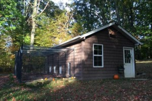Photo #4: The Canine Cottage! Dog boarding $25.00 per night