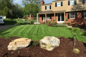 Photo #3: Scott and Sons Lawn Care