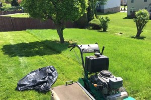 Photo #5: Scott and Sons Lawn Care