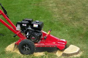 Photo #3: Stump grinding at affordable prices + removal of the grindings