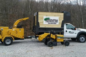 Photo #3: Branched Over Tree Service LLC