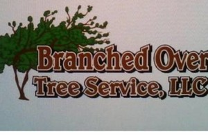 Photo #1: Branched Over Tree Service LLC