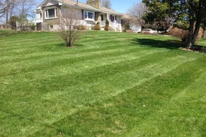 Photo #13: Briant's Lawn Care & Mulching