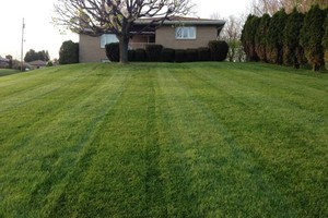 Photo #7: Briant's Lawn Care & Mulching