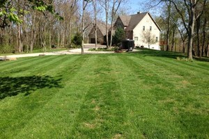 Photo #6: Briant's Lawn Care & Mulching