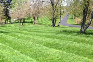 Photo #5: Briant's Lawn Care & Mulching