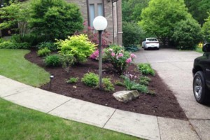 Photo #3: Paslow Lawn Service - Mulching, Landscaping. Licensed/Insured