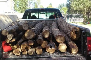 Photo #1: Firewood! Get your firewood here! $90 delivered