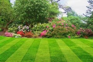 Photo #2: MC Landscaping - GRASS CUTTING 2016. FREE ESTIMATES!