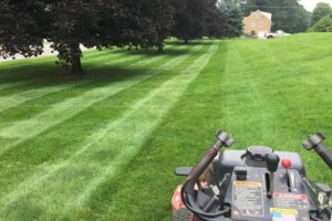 Photo #1: Purcell Lawn & Landscape, LLC. Grass Cutting, Lawn Maintenance, Mulching...