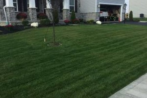 Photo #2: Vic's Landscaping .. We rake your lawns not your pockets