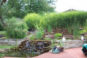 Photo #1: Wentling Landscaping - Landscape Maintenance and Beautification