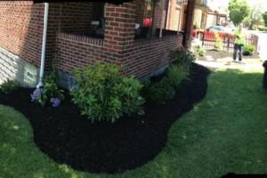 Photo #5: KMK Landscaping LLC - Grass Cutting, Mulching...