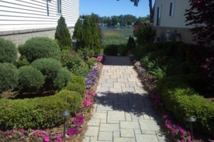 Photo #4: Pedro Quality landscape services