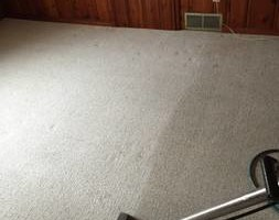 Photo #7: Williams Carpet Care - Carpet, Uphostery Cleaning, Water Removal