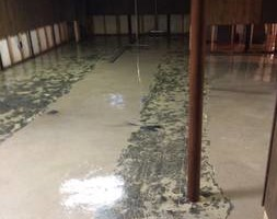 Photo #3: Williams Carpet Care - Carpet, Uphostery Cleaning, Water Removal