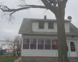 Photo #5: Chuck D's Tree trimming/removal