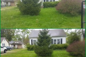 Photo #4: Reasonable lawn care. FREE on site estimate!