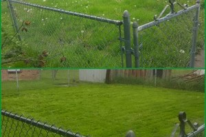 Photo #3: Reasonable lawn care. FREE on site estimate!