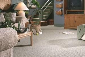 Photo #22: Carpet & Flooring by Doug Bell