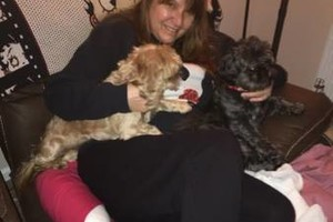 Photo #1: Boop's Pampered Pets - boarding, walkin services for dogs, cats and birds
