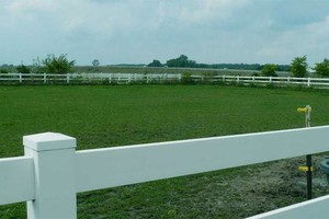Photo #3: Board Your Horse Here - Back to Our Old Prices!