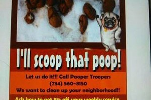 Photo #1: Pooper Troopers animal waste removal. Lucas County