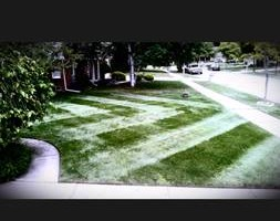Photo #11: CLC - Creative Lawn Care - Premium Detailed Lawn Specialist
