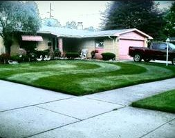 Photo #10: CLC - Creative Lawn Care - Premium Detailed Lawn Specialist