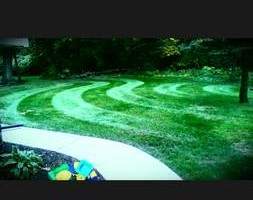 Photo #9: CLC - Creative Lawn Care - Premium Detailed Lawn Specialist
