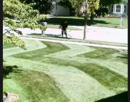 Photo #8: CLC - Creative Lawn Care - Premium Detailed Lawn Specialist