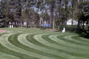 Photo #6: CLC - Creative Lawn Care - Premium Detailed Lawn Specialist