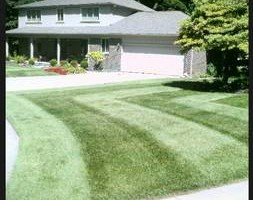 Photo #5: CLC - Creative Lawn Care - Premium Detailed Lawn Specialist