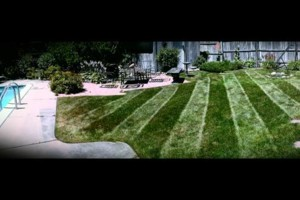 Photo #2: CLC - Creative Lawn Care - Premium Detailed Lawn Specialist
