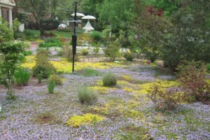 Photo #5: GLI LANDSCAPING Services by Byron Richardson