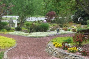 Photo #3: GLI LANDSCAPING Services by Byron Richardson