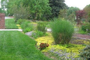 Photo #2: GLI LANDSCAPING Services by Byron Richardson