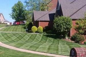 Photo #1: Premium Turf care & Lawn Manicuring