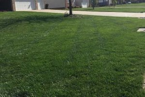Photo #3: Sanchez landscaping NC.