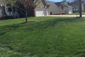 Photo #2: Sanchez landscaping NC.