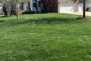 Photo #1: Sanchez landscaping NC.
