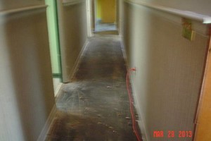 Photo #3: Terry's Flooring. CARPET & FLOORING INSTALLS
