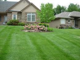 Photo #3: Martinez Lawn care and Handy man work