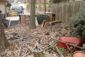Photo #10: SmallHauls - Junk / Debris / Small Moves