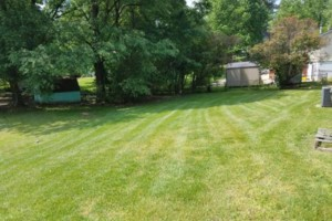 Photo #1: Beamon's Professional Lawn Care