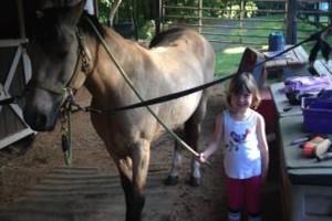 Photo #7: Autumn Sun Stables. Horseback Riding Lessons