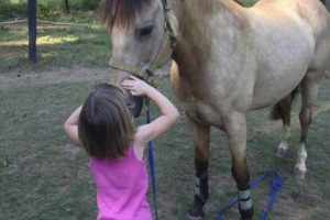 Photo #9: Autumn Sun Stables. Horseback Riding Lessons