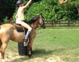 Photo #10: Autumn Sun Stables. Horseback Riding Lessons