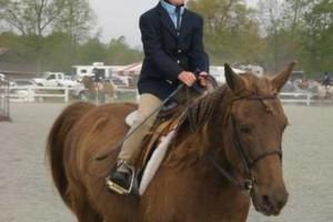 Photo #14: Autumn Sun Stables. Horseback Riding Lessons